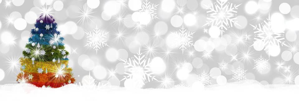 Frohe Weihnachten An Kollegen.Wir Wünschen Frohe Weihnachten Und Alles Gute Für 21018